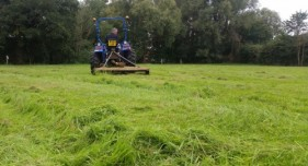 Topping springtime grass in equine paddocks.